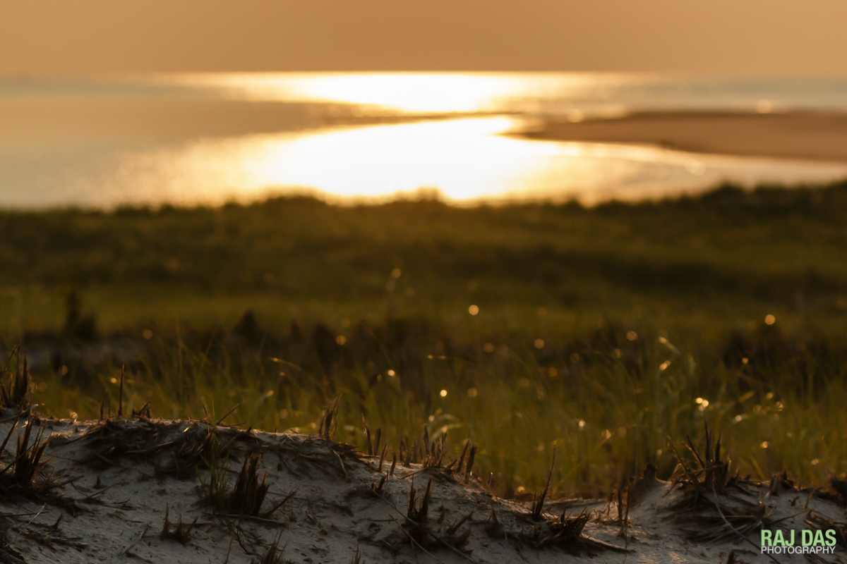 Early morning sunlight reflecting off the ocean waters along Crane Beach