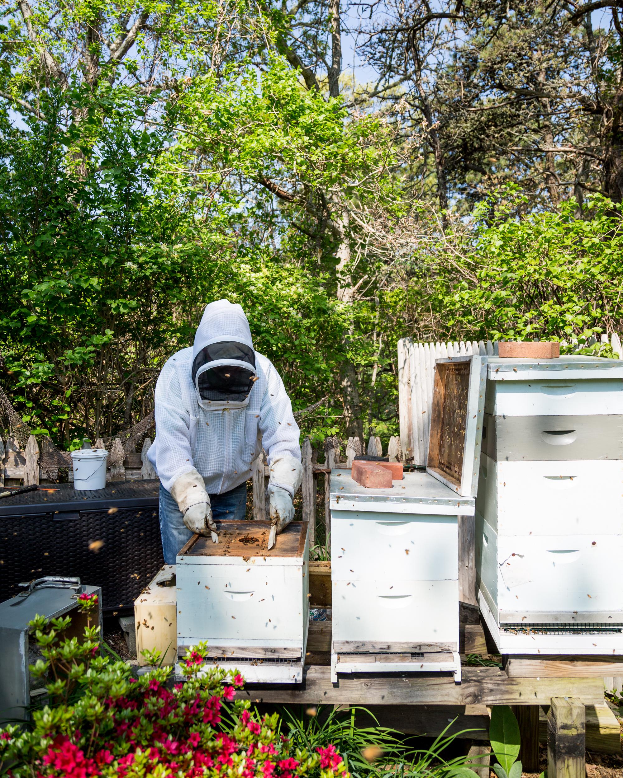 Beekeeper-23.jpg