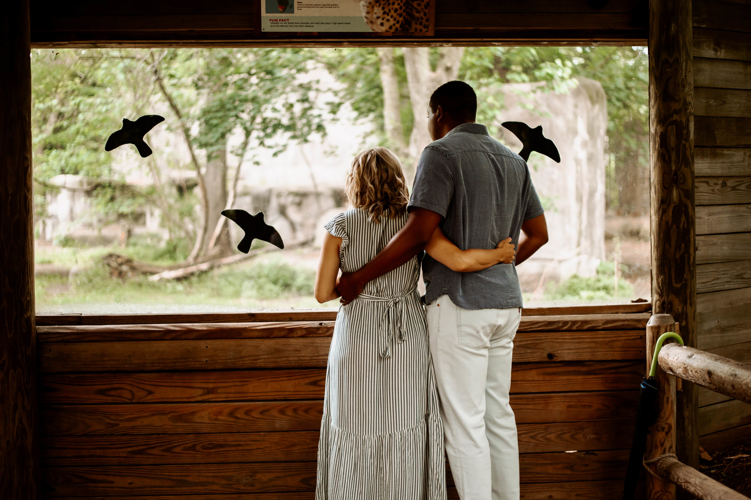 maternity session at the zoo-2.jpg
