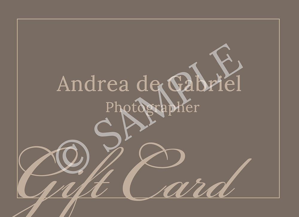 - Keeping it simple and to the point with the Generic Gift Card!