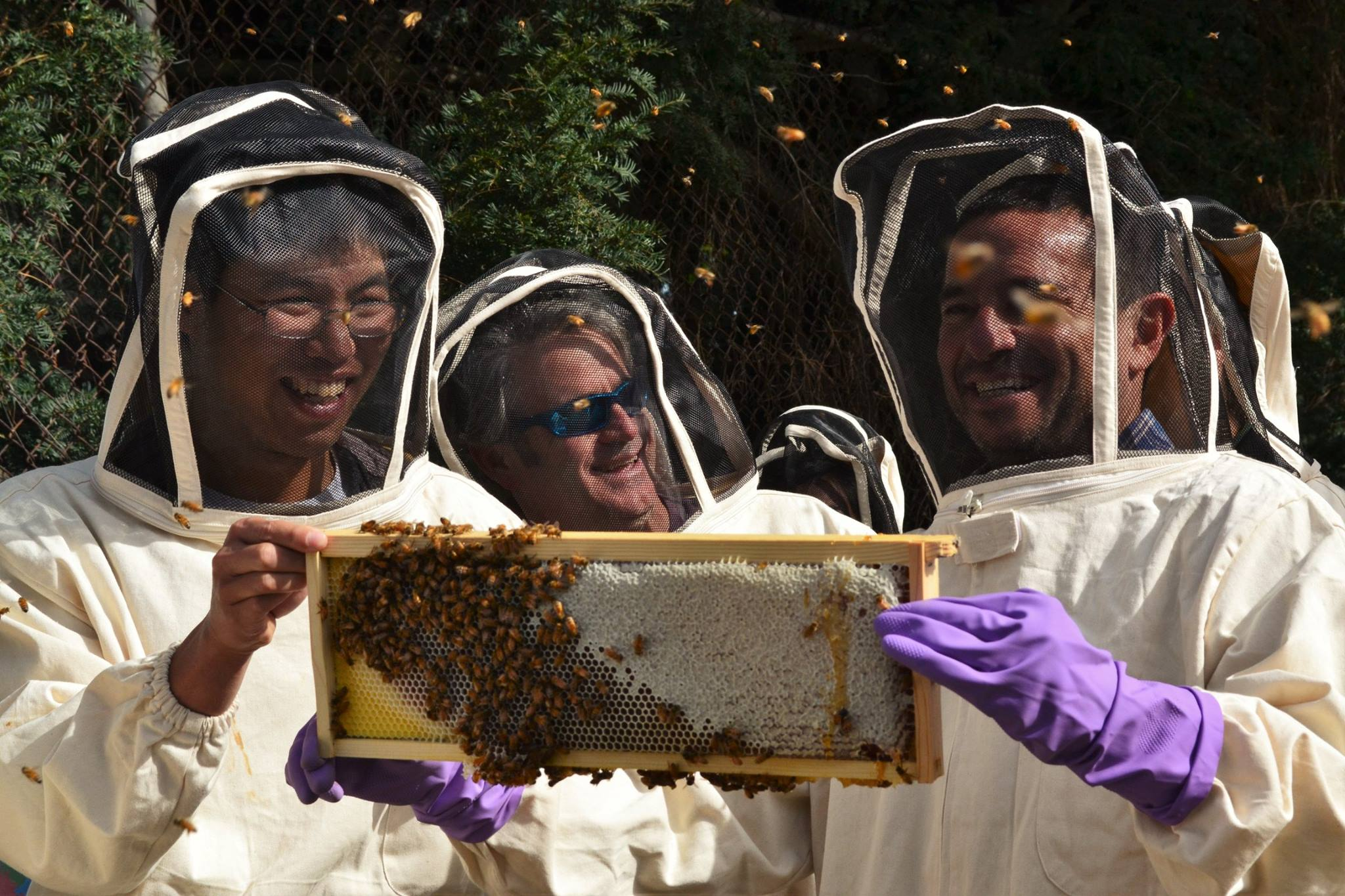 Planet Bee Foundation Joseph See