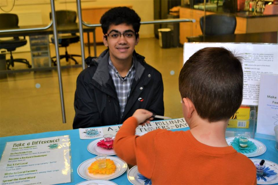 Hesham teaches a child how to play our popular tabletop pollination game at Cal Academy