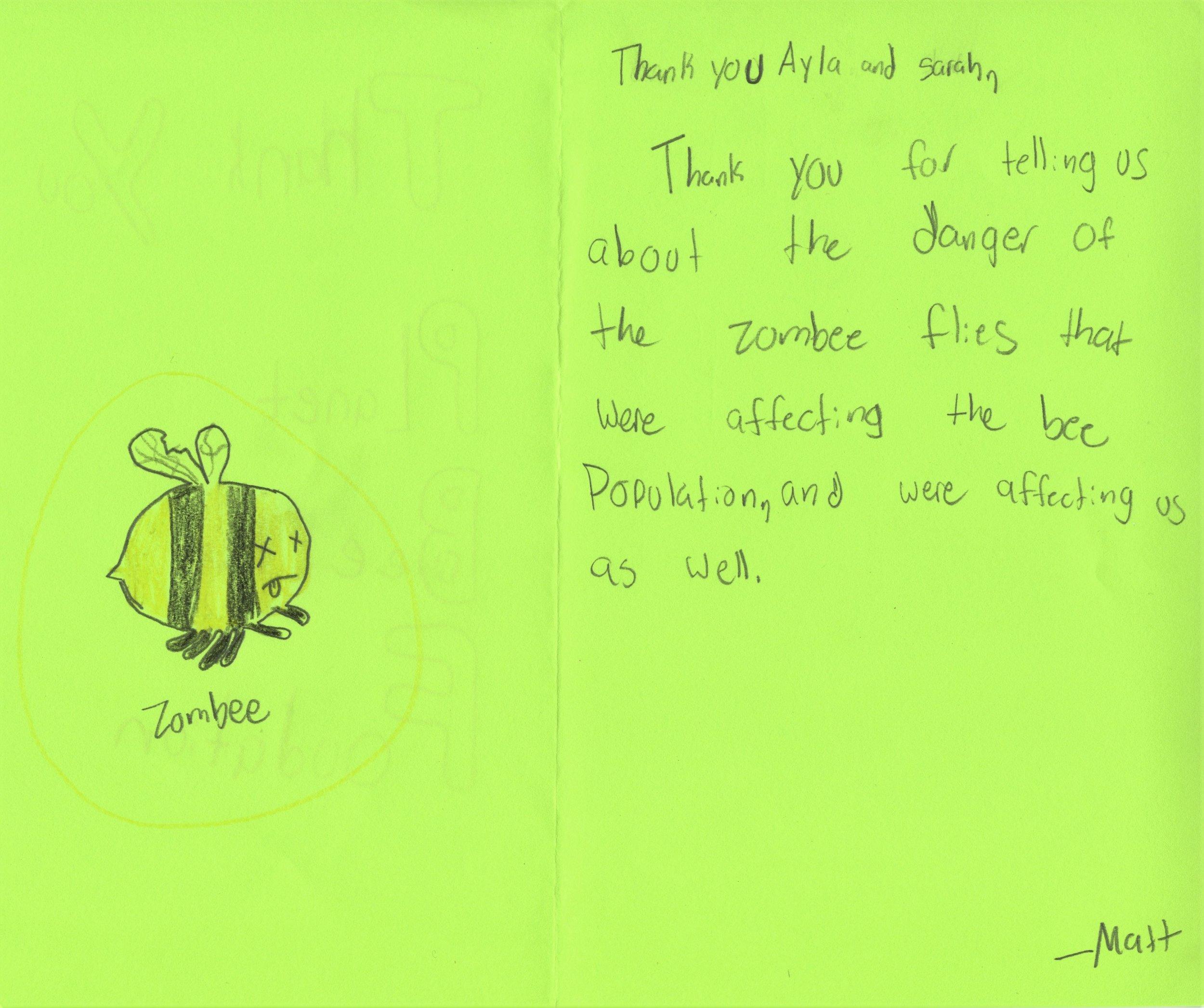 Planet Bee Foundation ZomBee