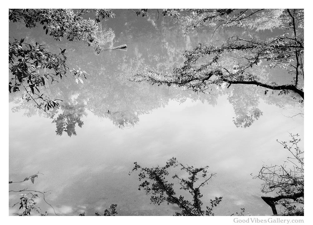 Wondrous_Water (2).jpg