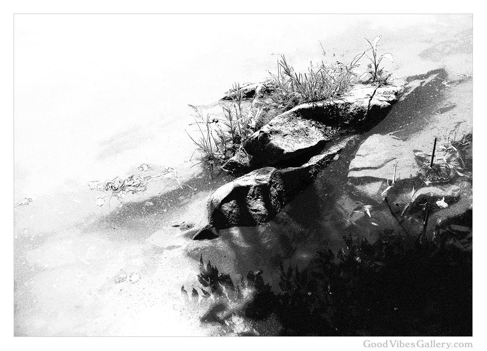 Wondrous_Water (7).jpg