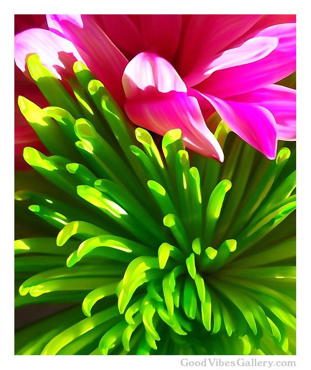flowers-abstract-paintings-expressionism-fine-art-zen-tao-art-nature-contemporary-painter-georgia-o'keeffe-zen-tao-art-in-living-color-good-vibes-gallery-goodvibesgallery