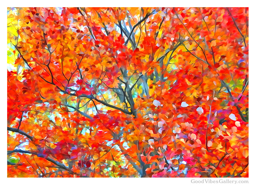 fall-autumn-leaves-painting-photos-nature-photography-fall-colors-foliage-everything-changes-goodvibesgallery-good-vibes-gallery