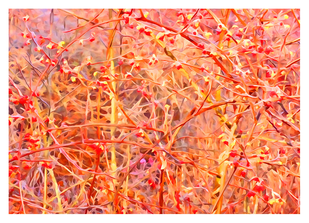 jackson-pollock-abstract-paintings-expressionism-fine-art-contemporary-painter-zen-tao-art-nature-interconnected-good-vibes-gallery