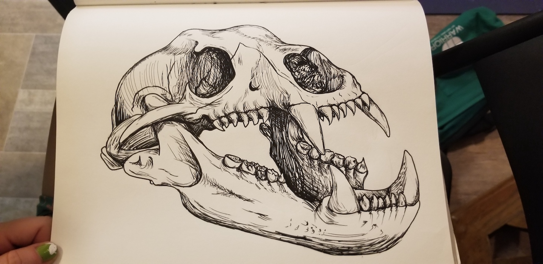 """Chelsea Codd """"Bear skull"""""""