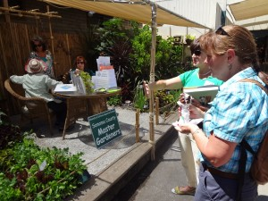 Celeste getting help from the Sonoma County Master Gardeners