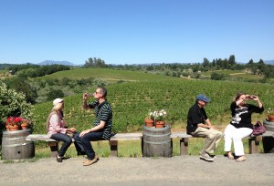 Tasting at Iron Horse Vineyards