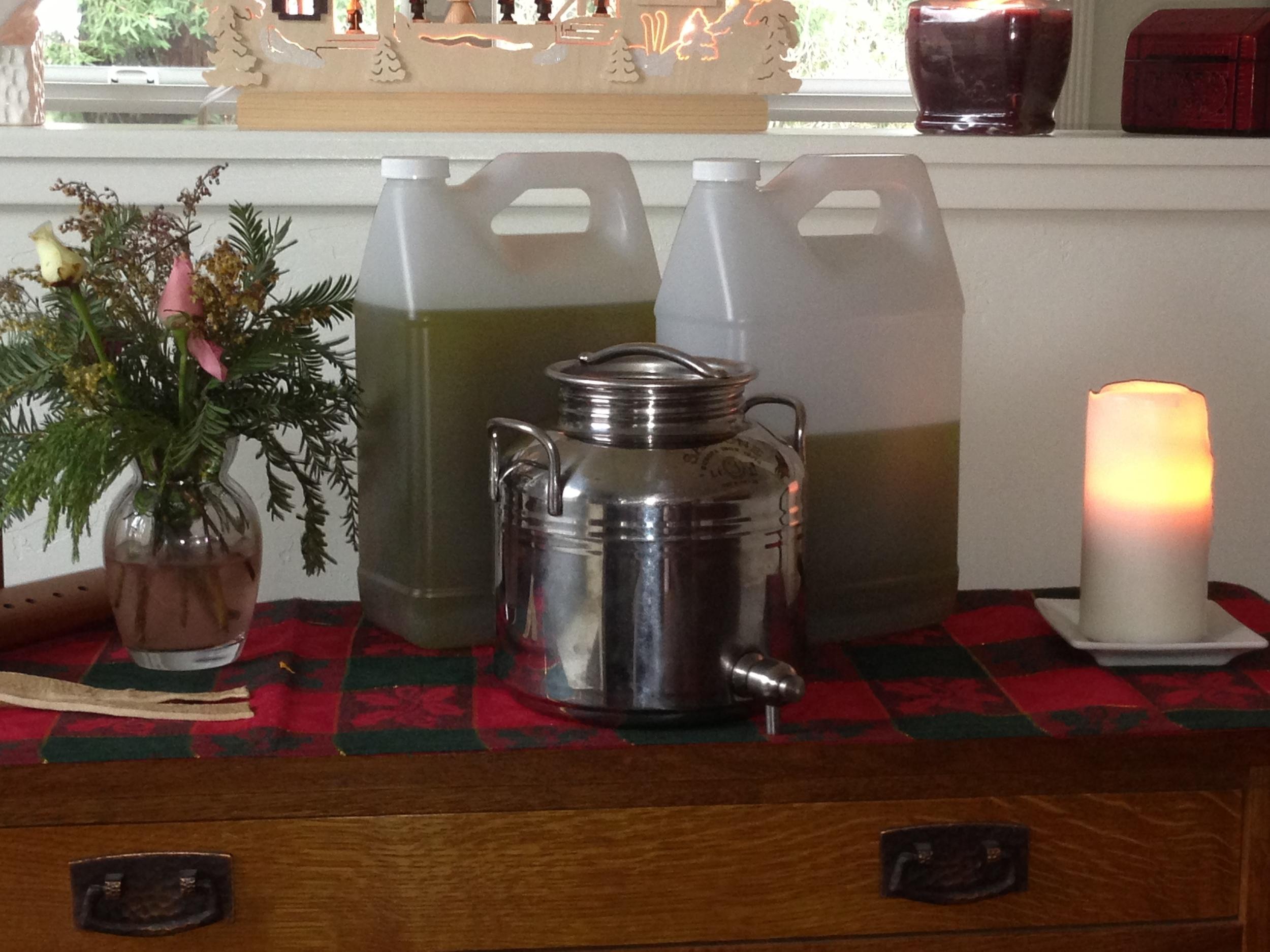 Gantz Family Vineyards olive oil