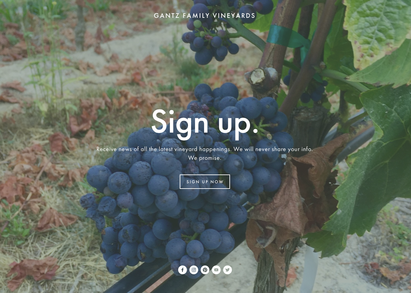 Newsletter_GantzFamilyVineyards.png