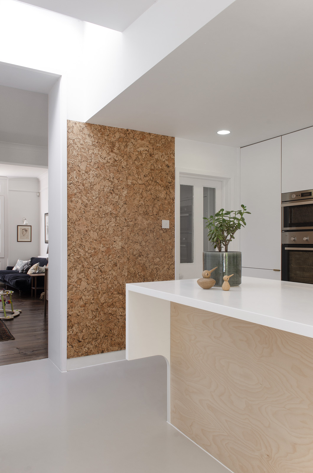 Projects_Office_Southgate Road_Kitchen Rear Side.jpg