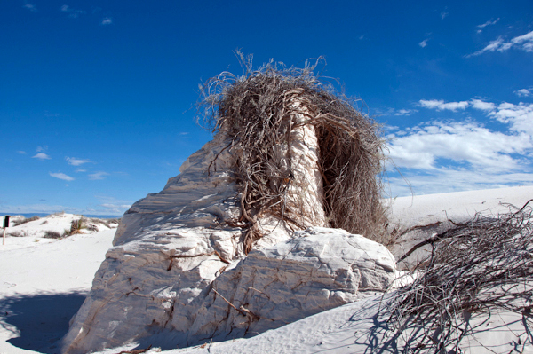 White Sands Head