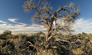 Valley of Fires Campground & Recreation Area