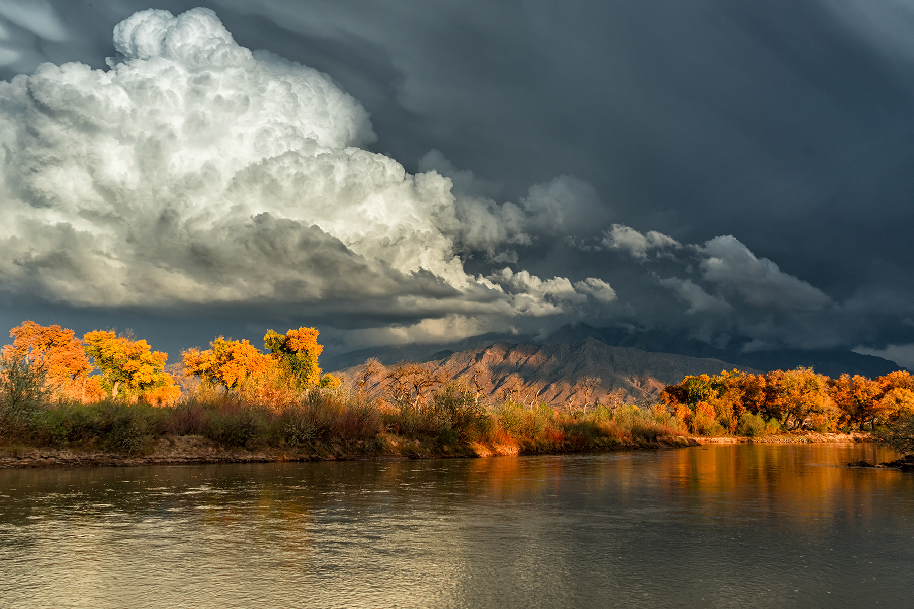 'Autumn Along the Rio Grande' ,   3rd Place Seasons,, Steven Yabek