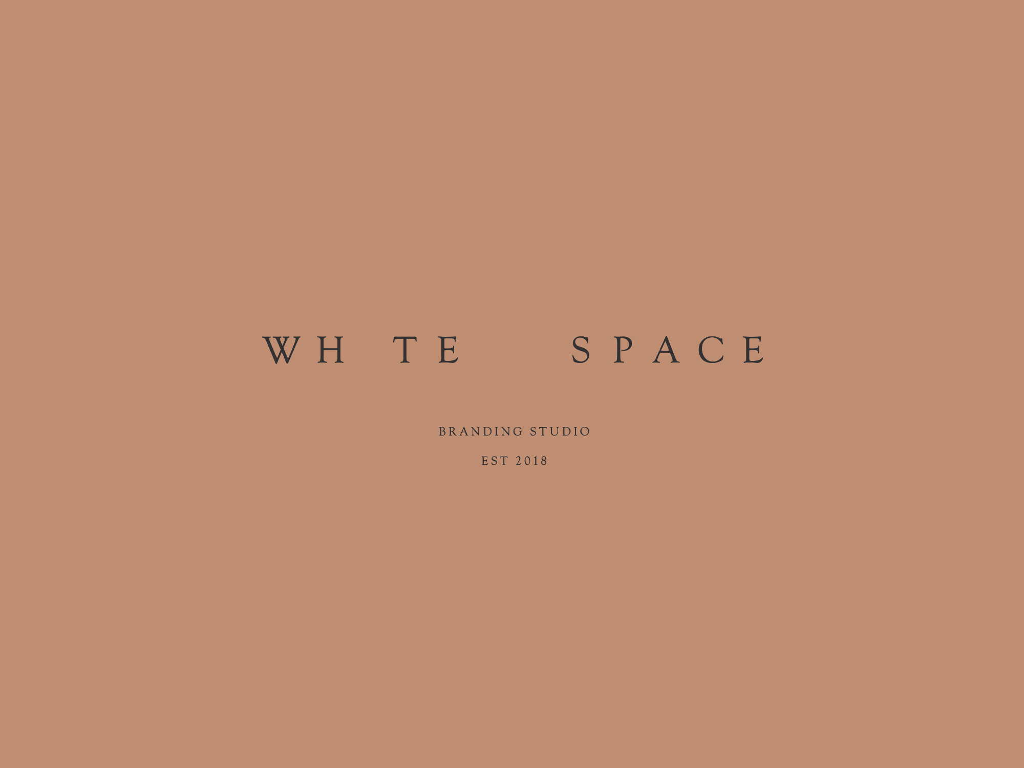 WhteSpace-4.jpg