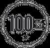 100percentmodelhusti