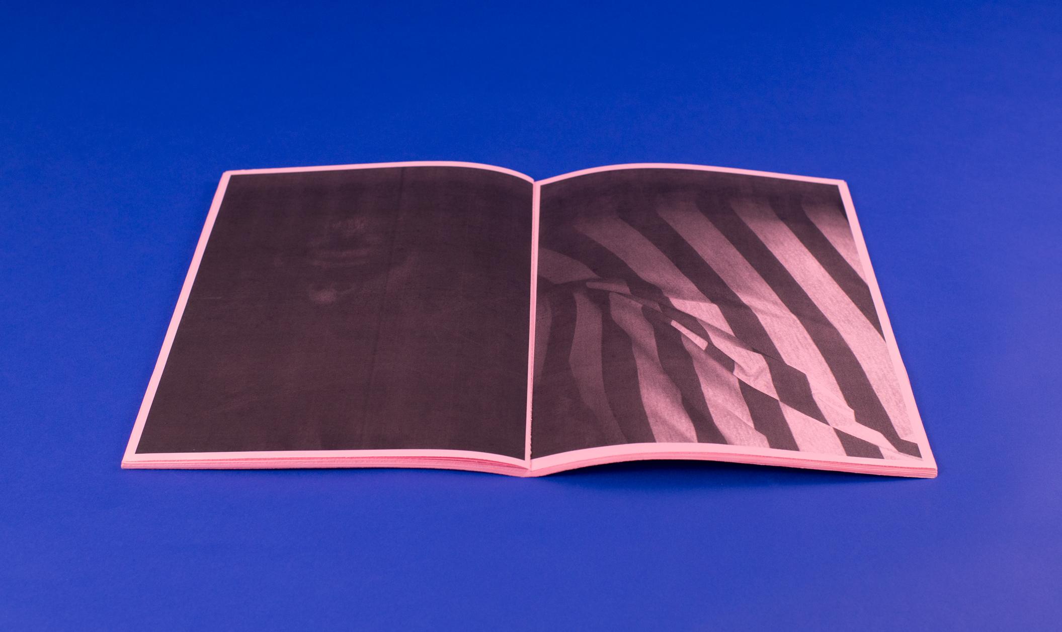 PinkXeroxSpread4.jpg