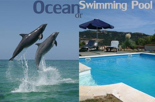 ocean-or-swimming-pool.jpg