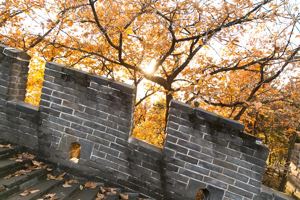 Beijing_blog_sm-51.jpg