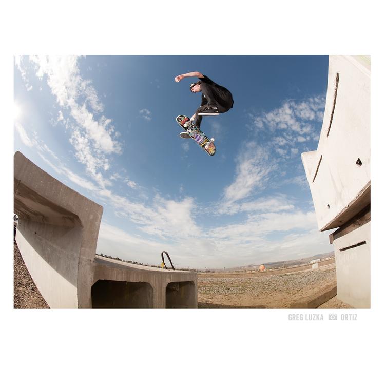 Darkstar Skateboards Greg Lutzka photo