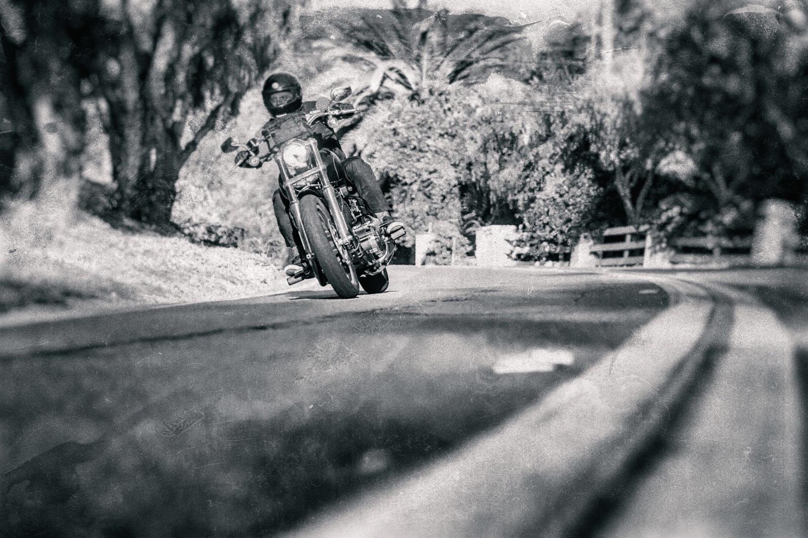 Darkstar-skateboards-harley-davidson-plg.jpg