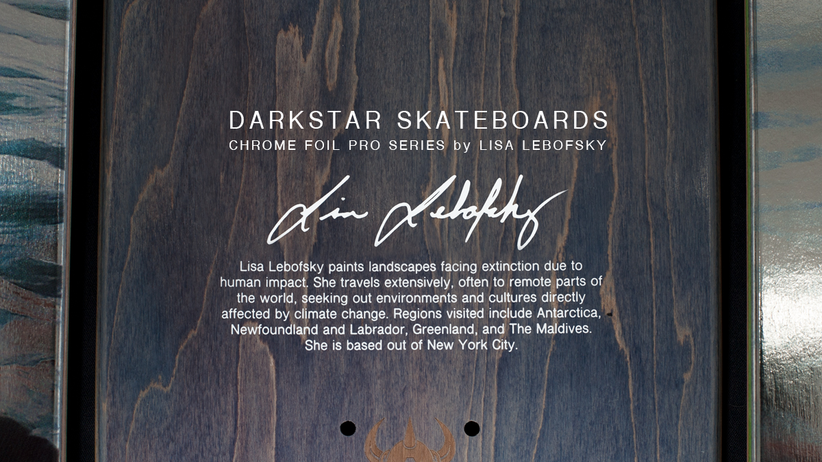 Darkstar-skateboards-Lebofsky-artist-collab-metallic.jpg