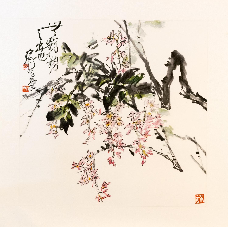 MingYuZhang-11-2.jpg