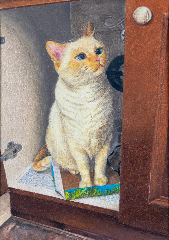 17-Katherine_Han-Cat_Under_The_Sink.jpg