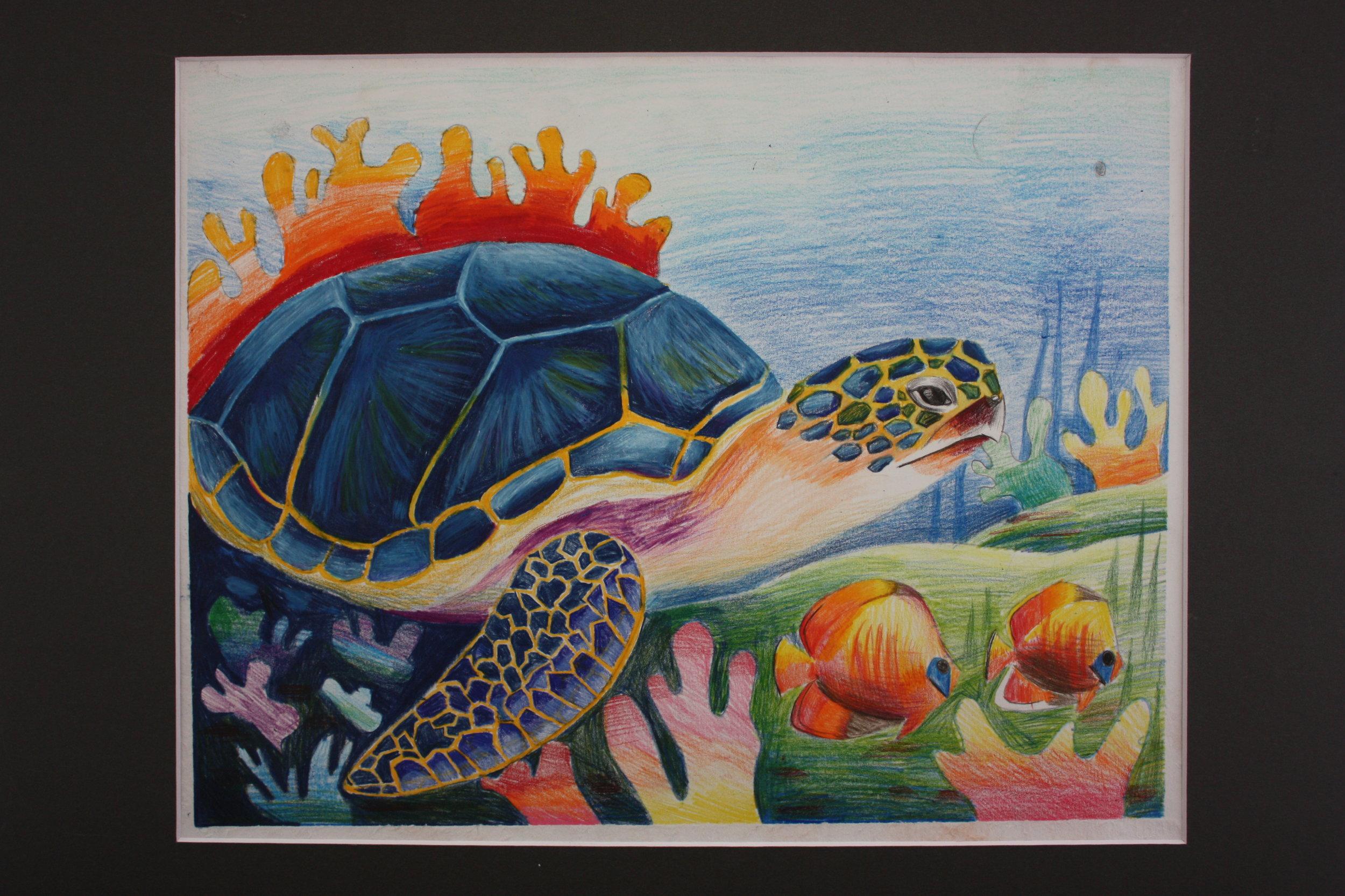 Jenny Wu_ 9_ The Turtle_ Maya Li Art Studio.JPG