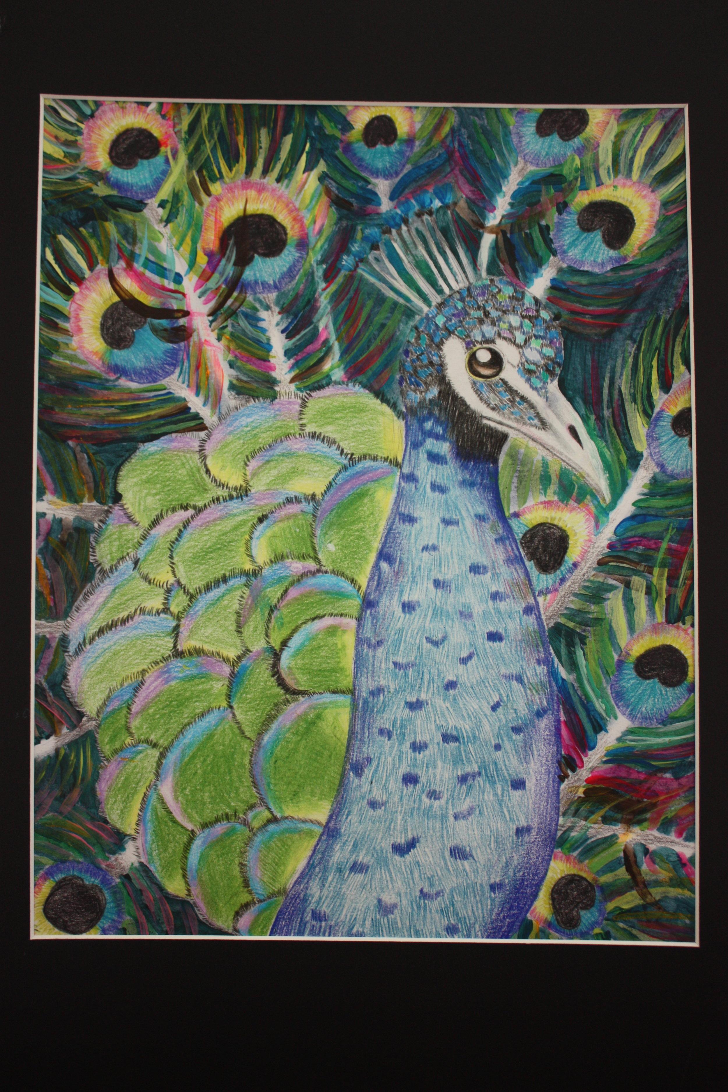Nicole Lin_ 10_ A Peacock_ Maya Li Art Studio.JPG