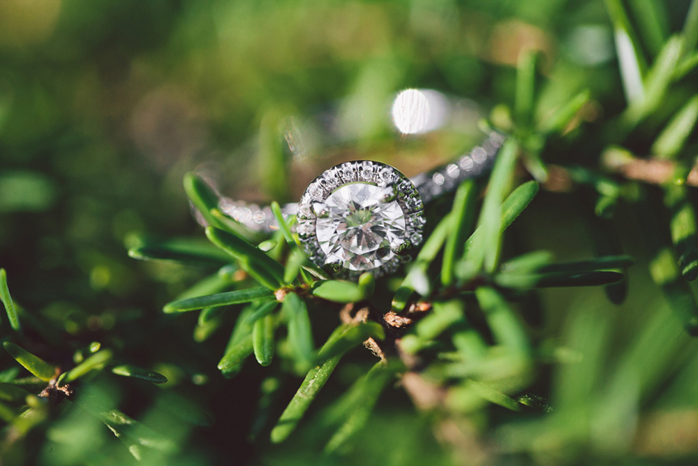 ring in green tree by Vancouver wedding photographer