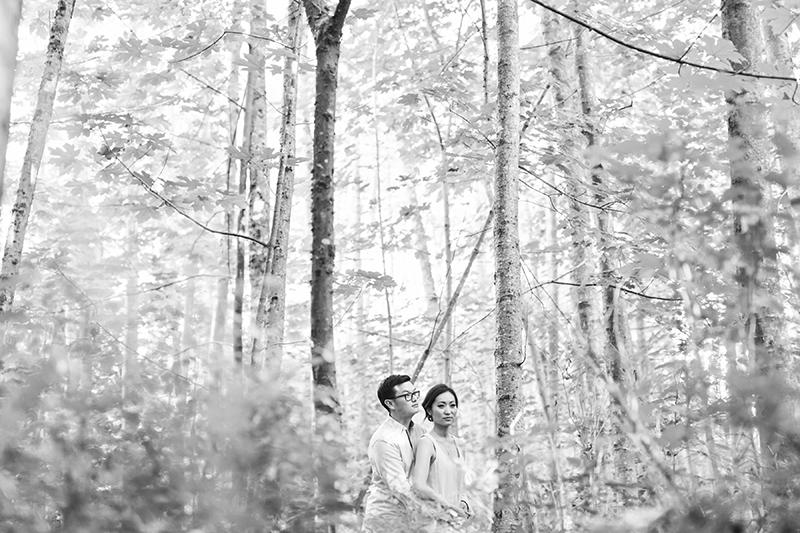 Engaged couple in forest, Vancouver BC