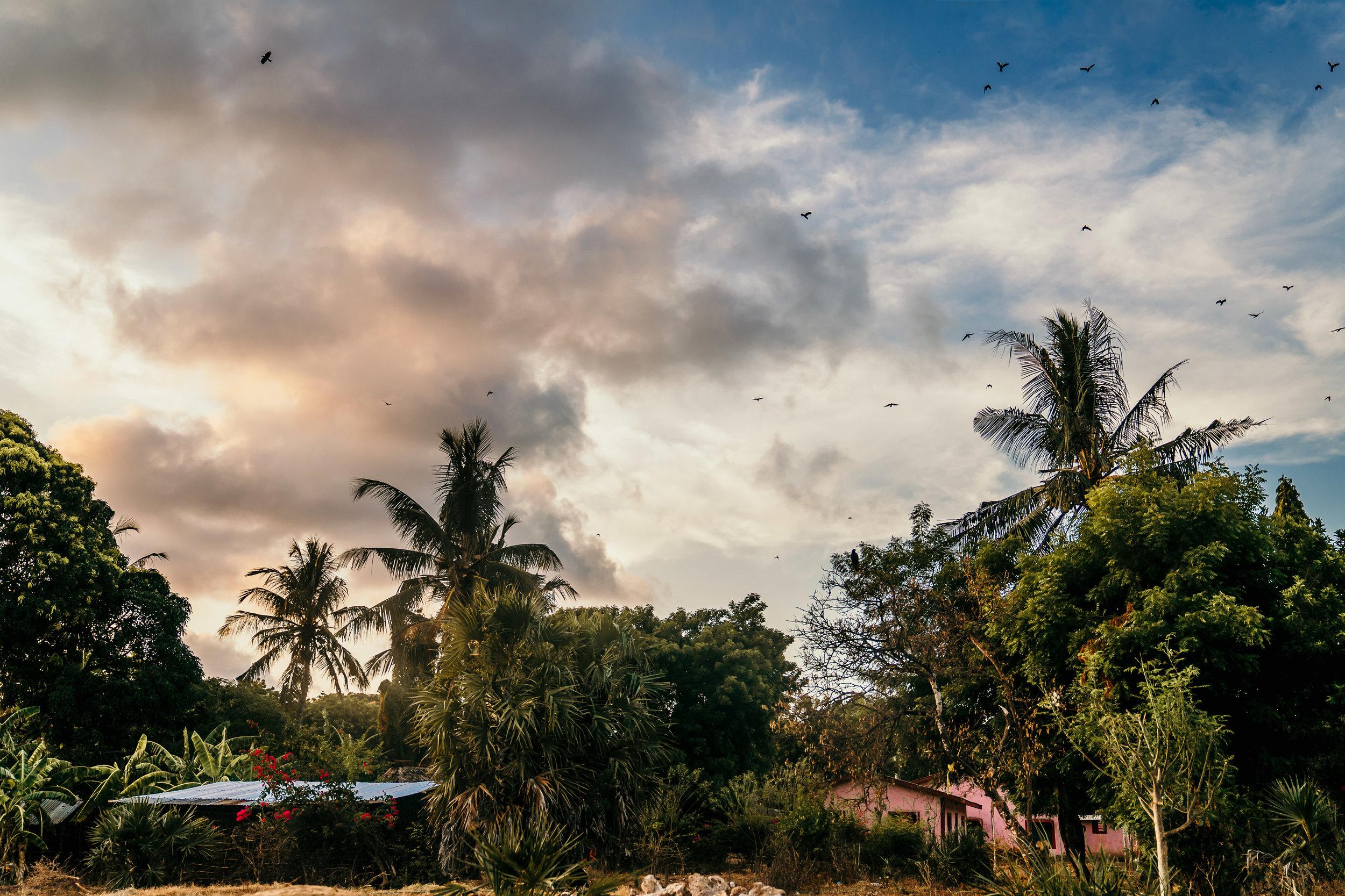 Malindi, Kenya-234.jpg