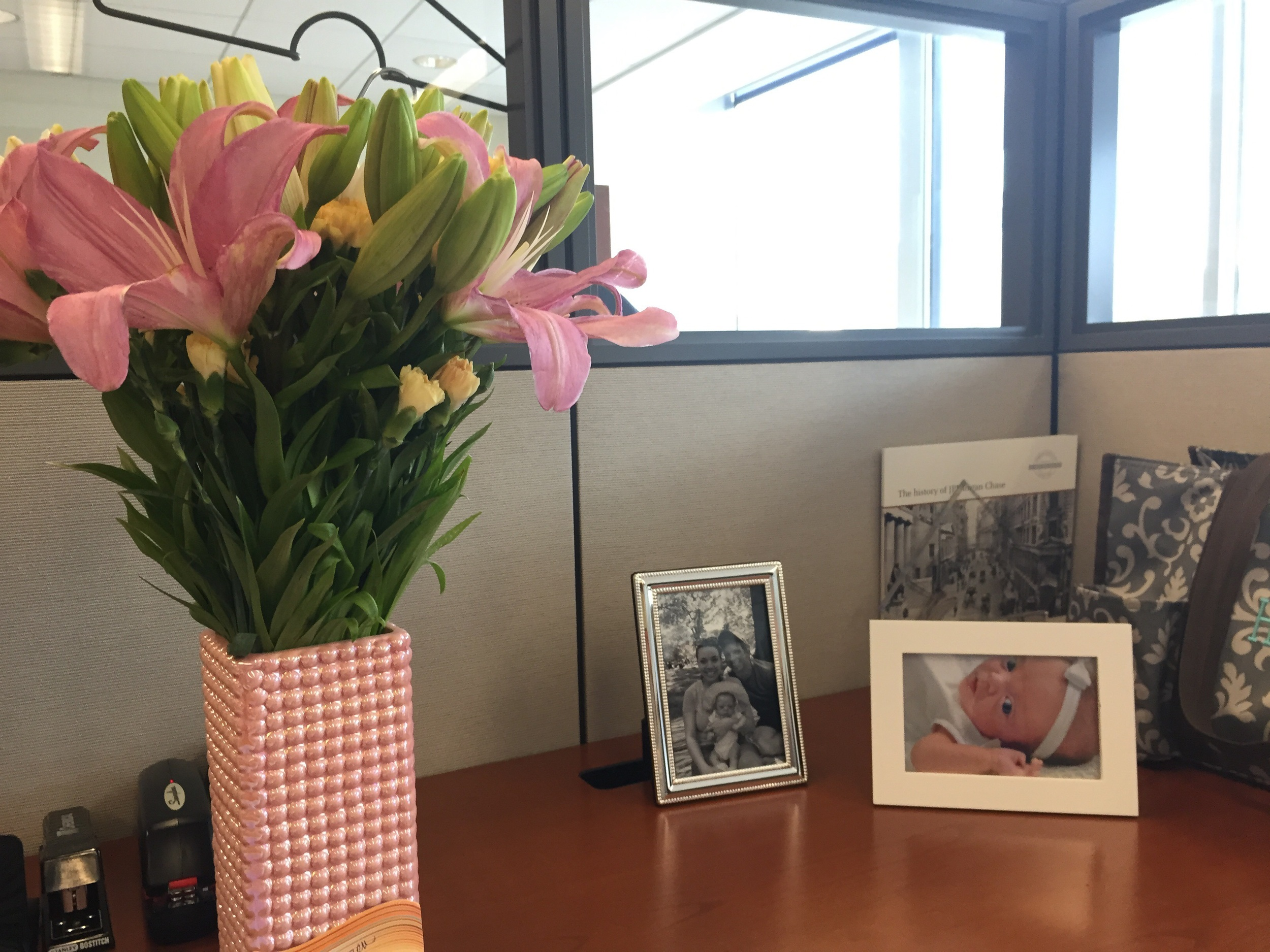 Flowers at my desk on my first day, plus new pictures of Lucie!