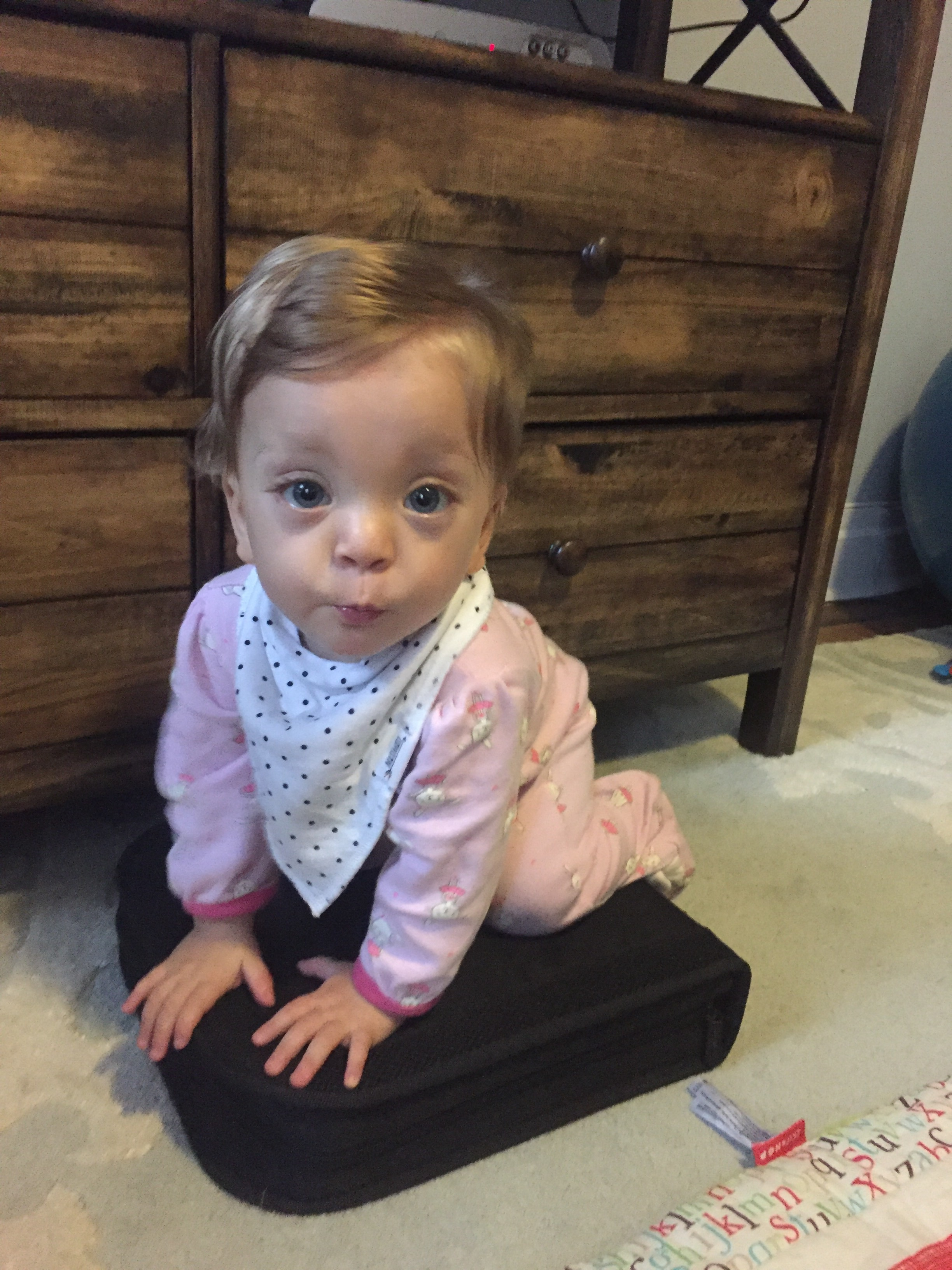 """Lucie pulled down our DVD case to show us what DVDs are used for these days. Gotta love technology ;). And her """"blue steel"""" look is on fleek! Right?"""