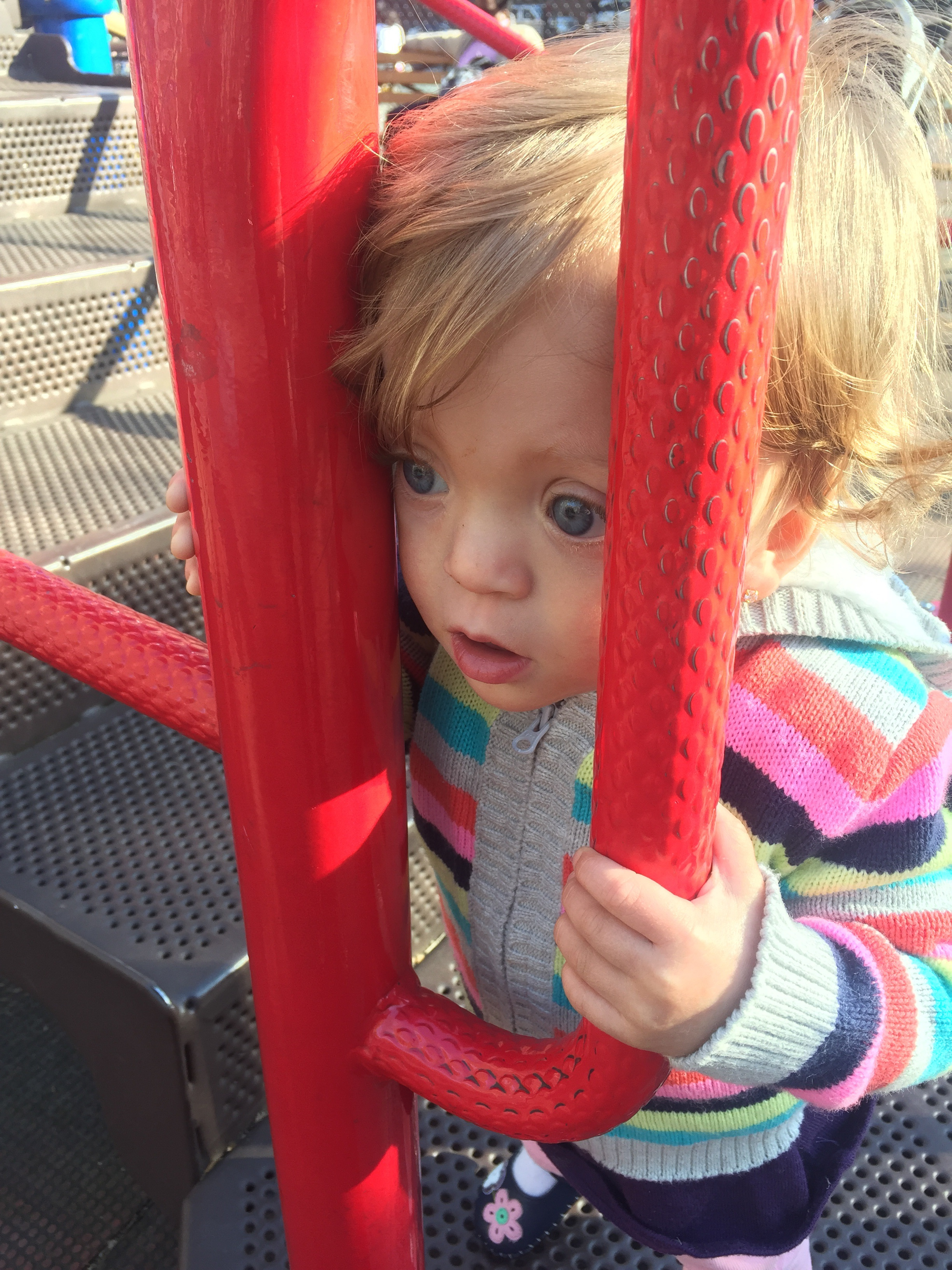 At the playground, just taking it all in.