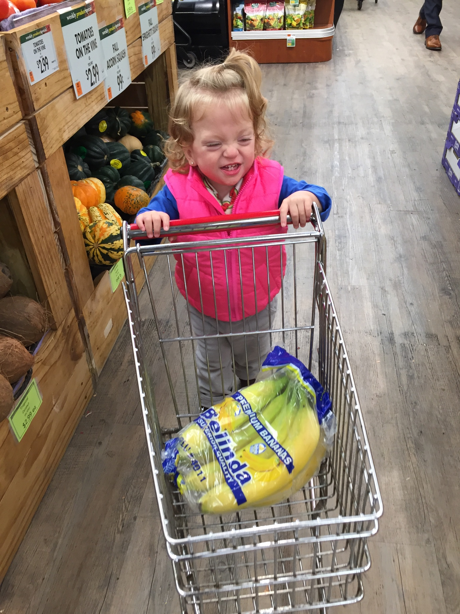 Now that Lucie is getting bigger, we're teaching her to help out. She looooves pushing the carts in the grocery store and won't let anyone help her steer. Look out shoppers!