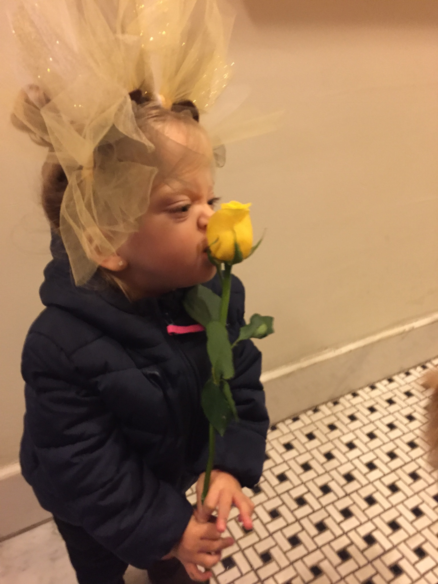 We also walked around to some of the local stores on our street that we regularly frequent to say Happy Halloween. Since Lucie isn't eating candy just yet, our bodega shop gave Lucie her first rose which was so sweet.