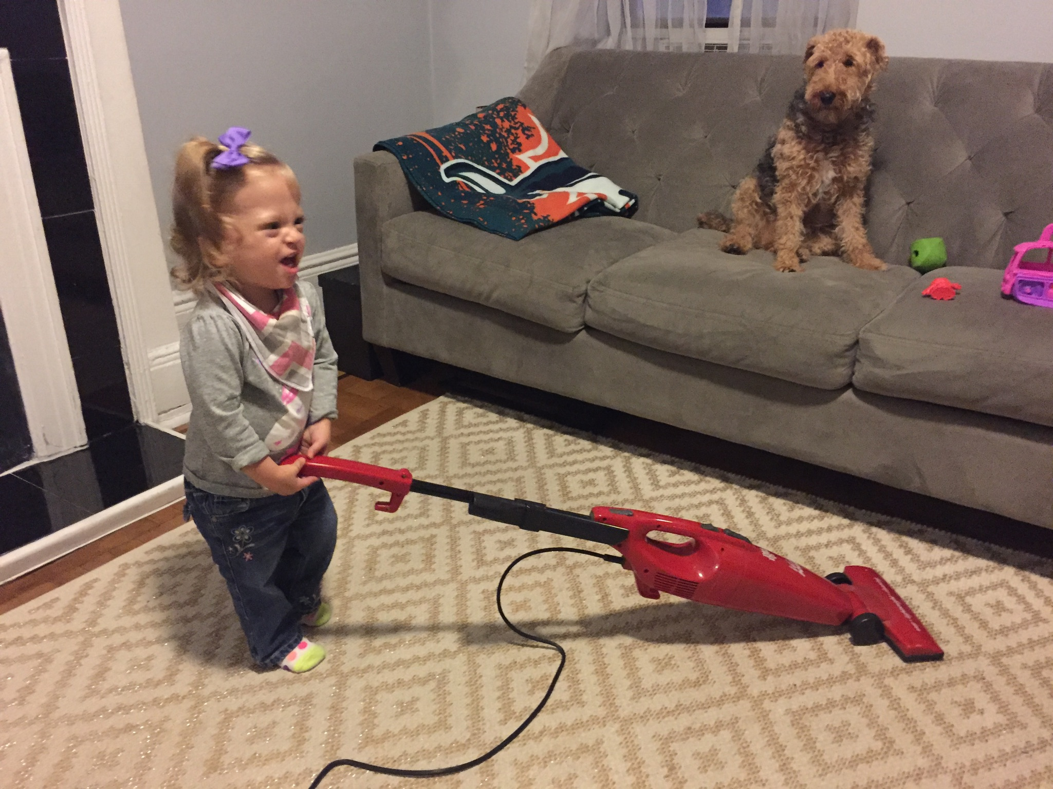 She helped us vacuum the living room too, what a great helper! Bess is terrified. Haha!
