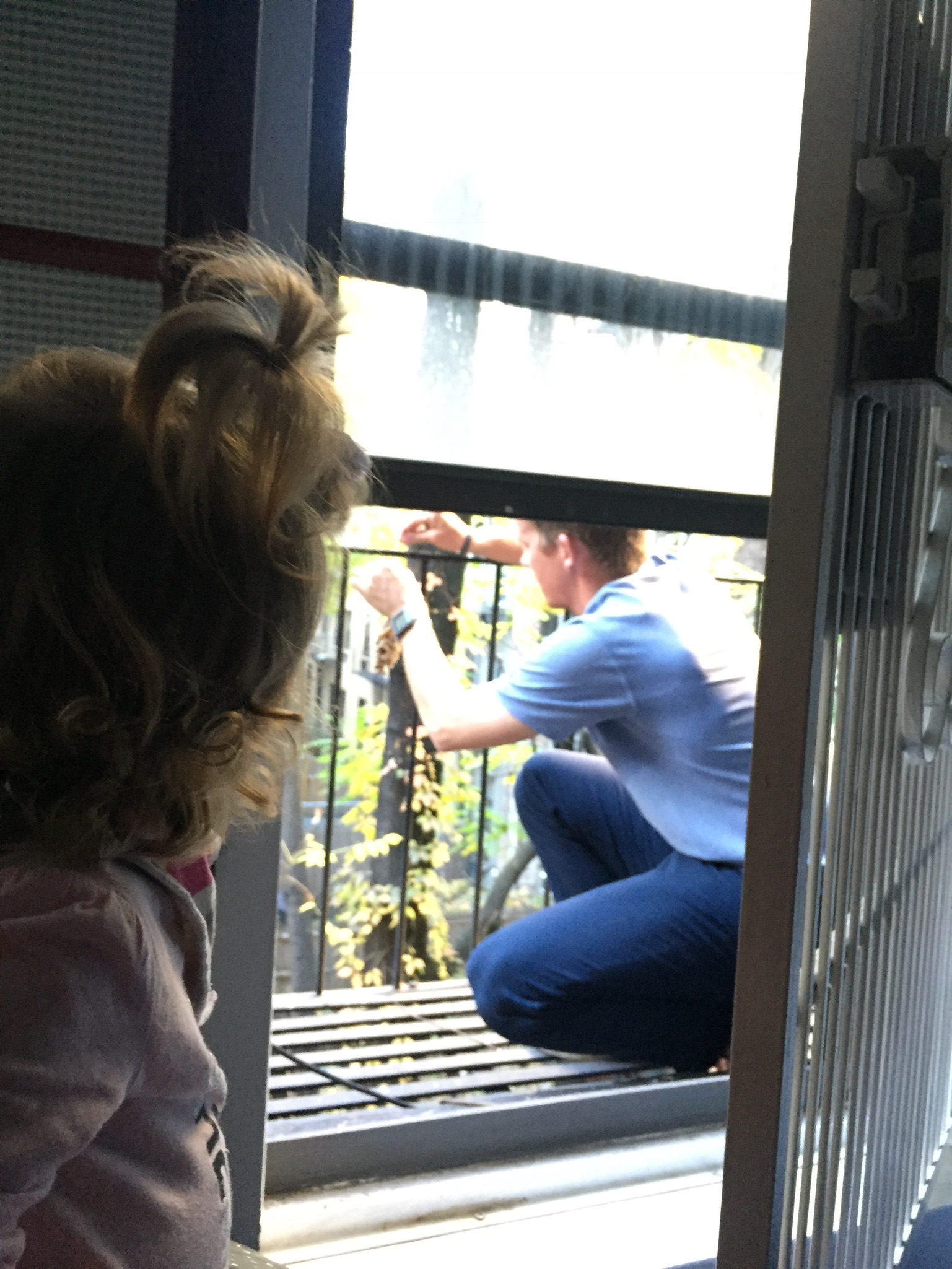 """Dada setting up a bird feeder on our balcony so Lucie could watch them out her window. She had already seen several before he did this and would call out, """"Biiird! Biiiird!"""" So now we are hoping this will bring a few more our way before winter. (We also discovered that this is not a fire escape like we initially thought, so we need to figure out an escape plan now. Eek!)"""