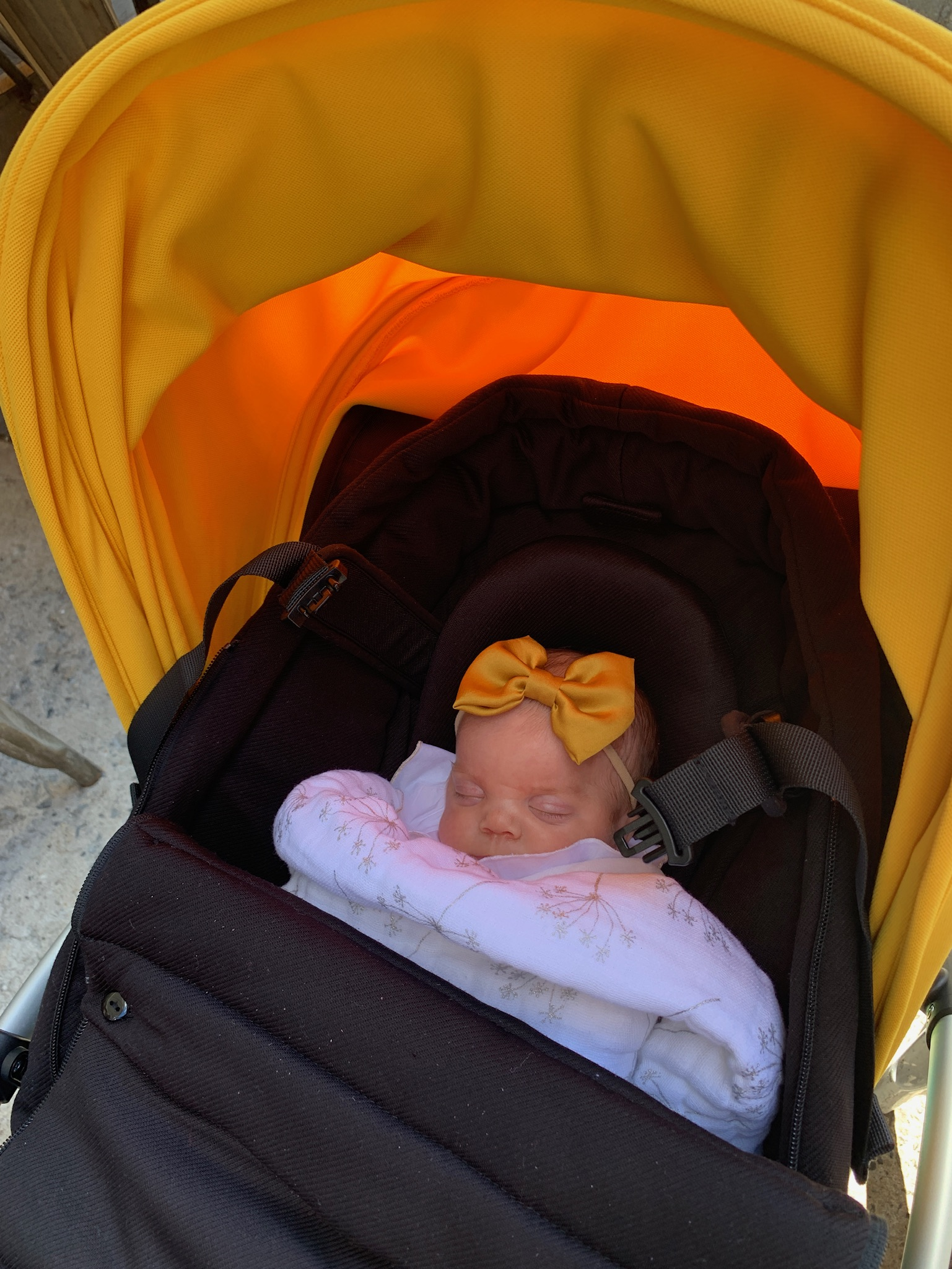 Sleeping happily in her stroller