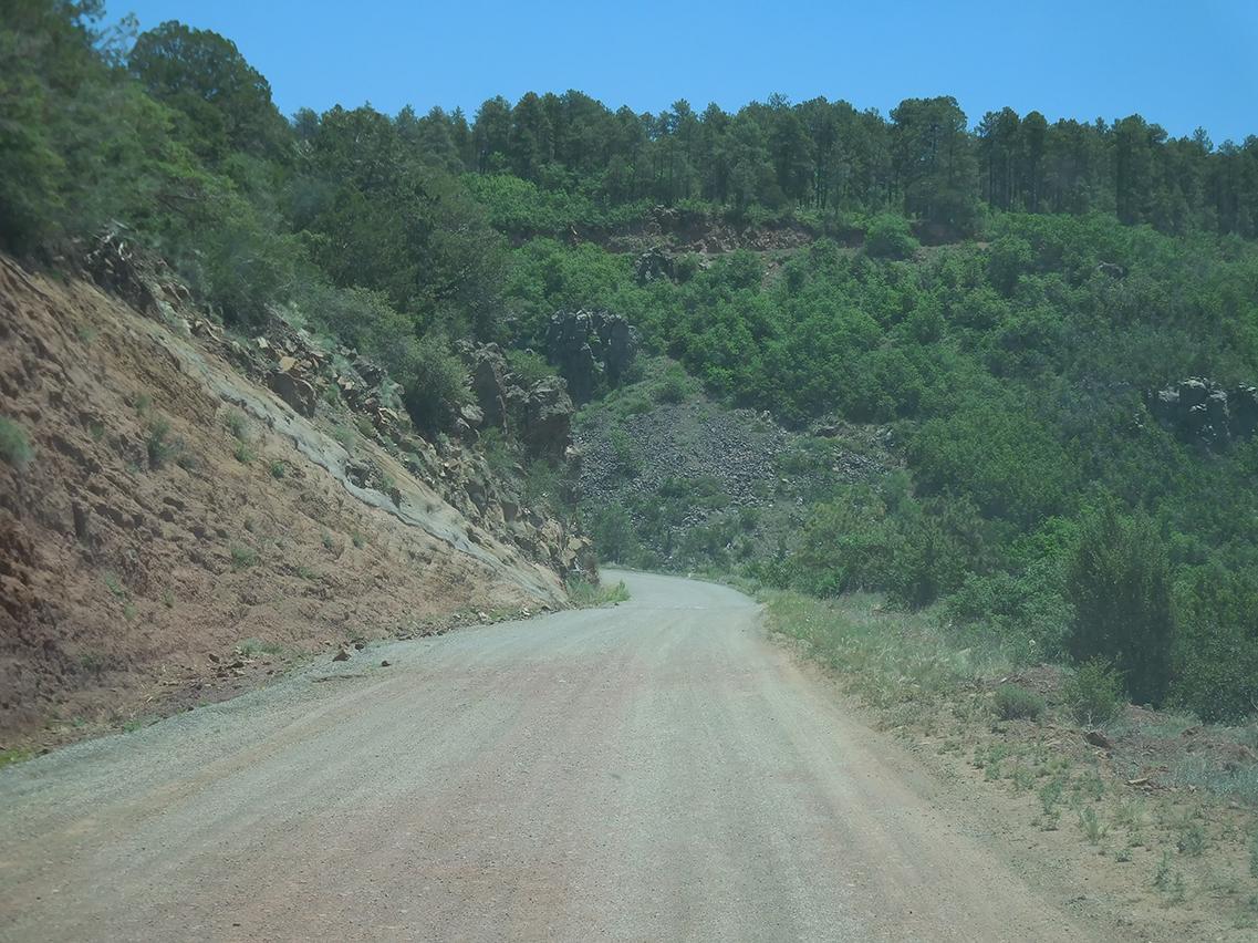 Joni captures the gravel road up Mingus Mountain