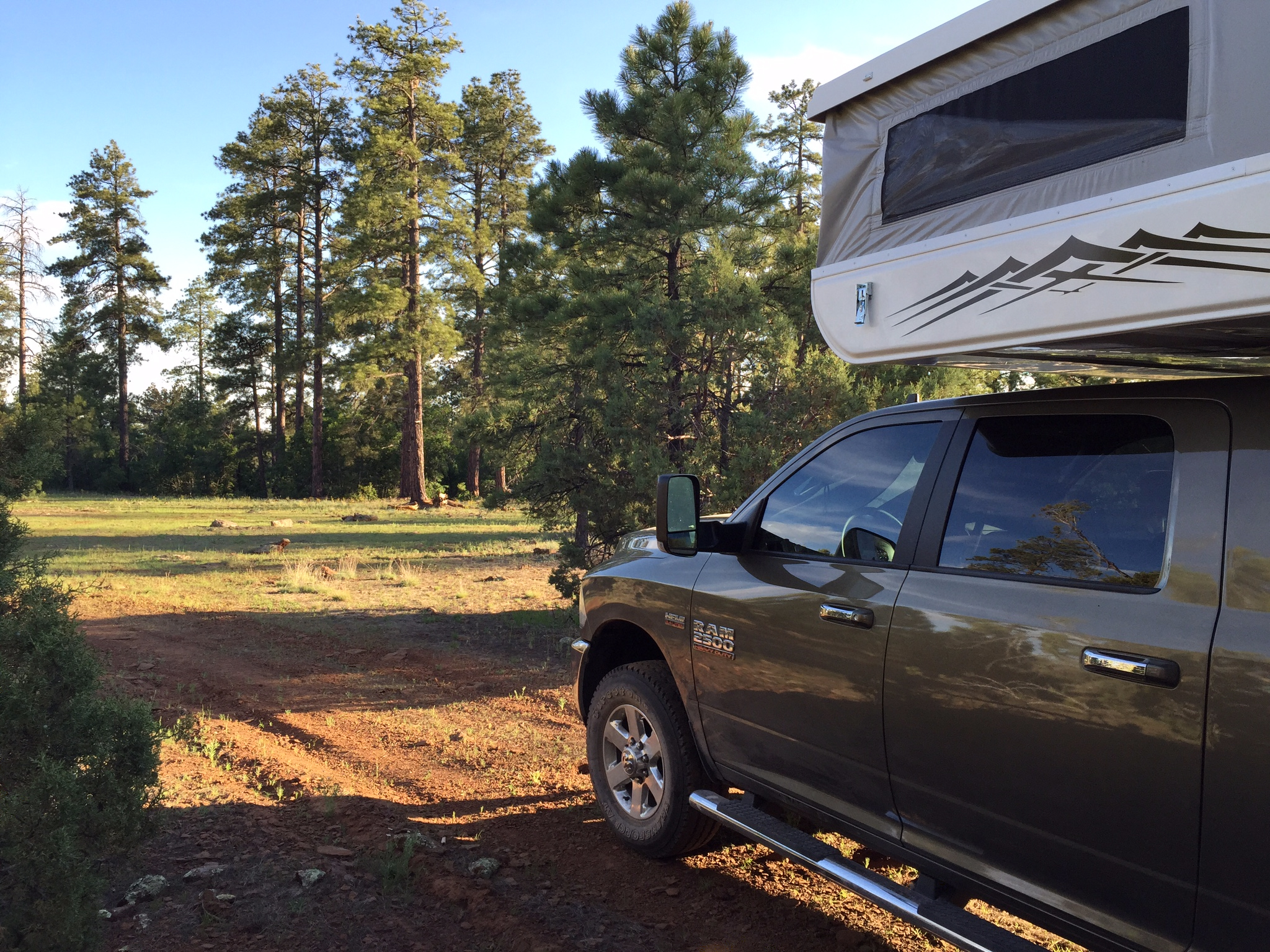 Our beautiful campsite in the Kaibab National Forest