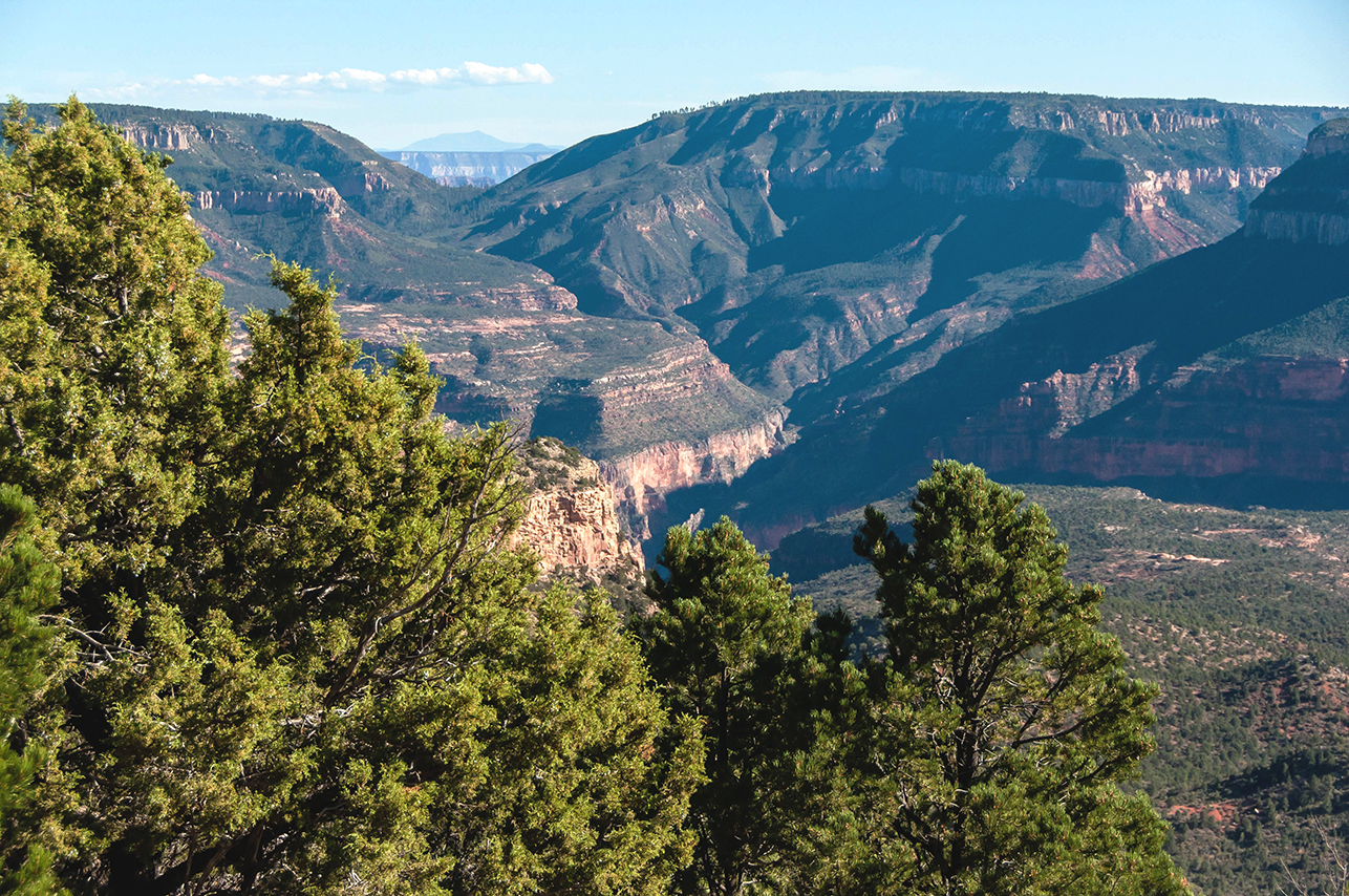 View of Crazy Jug Canyon and Mauv Saddle. The formation beyond Mauv Saddle is the South Rim. We aren't sure what the mountains are beyond the South Rim.