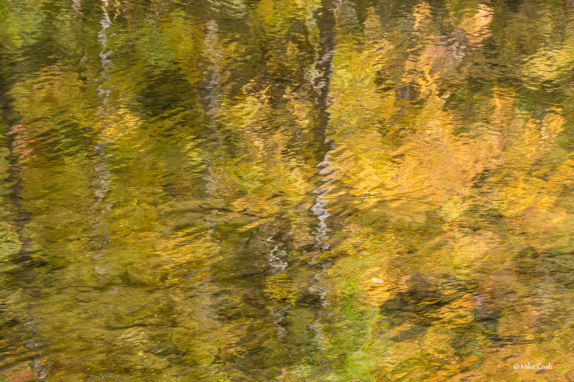 A reflection of Fall.