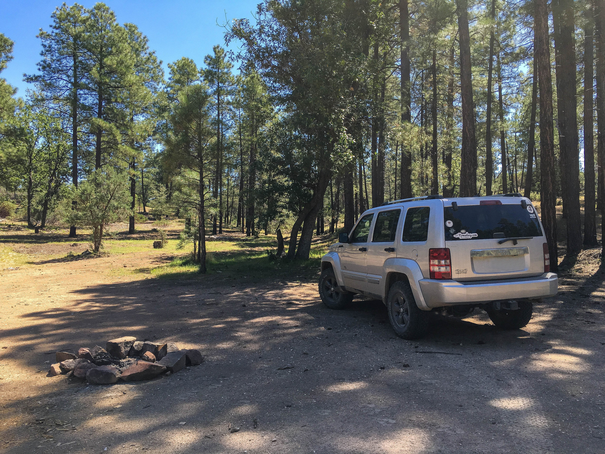 In the pines at Camp Wood.