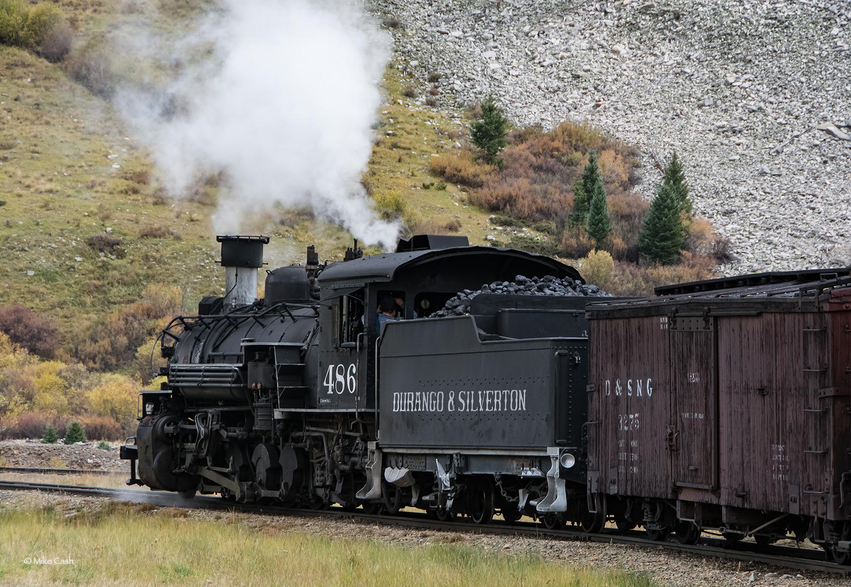 #486 backs onto the siding.